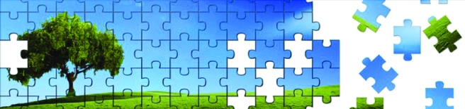 Veristat-Puzzle