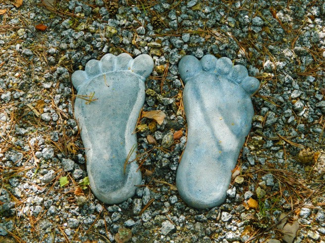 Veristat-Footprints-CRO